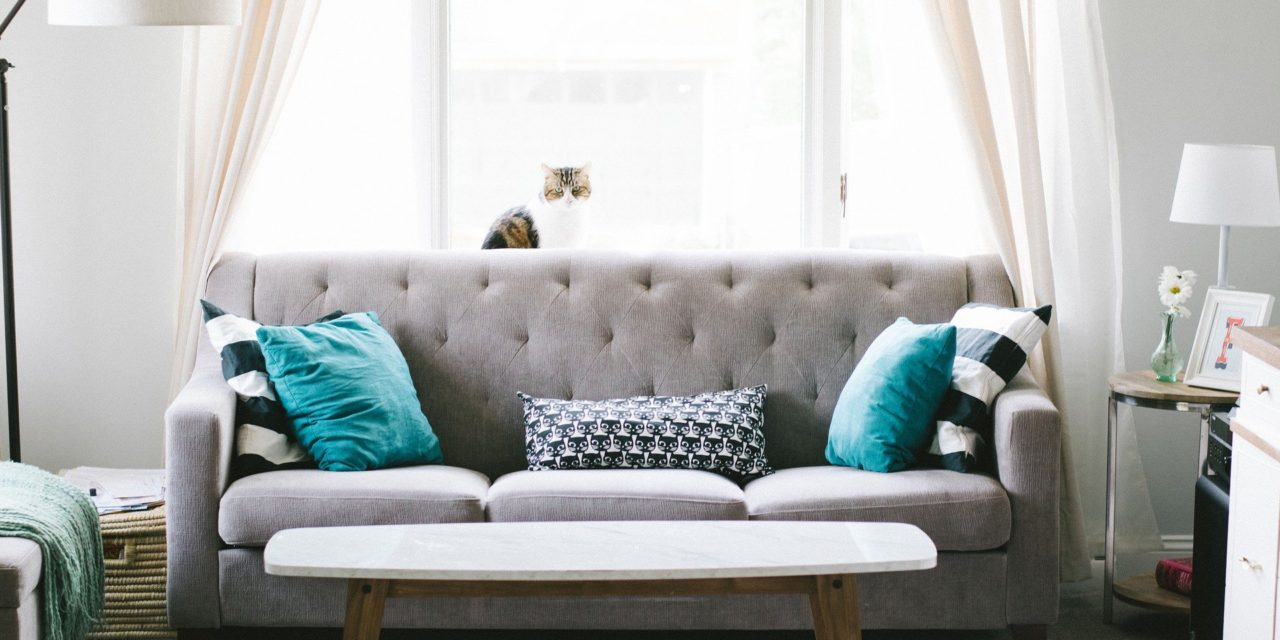 Comercio exterior del mueble. ANIEME ha presentado el informe de resultados del comercio exterior del sector del mueble español relativo al periodo de enero a abril 2020.