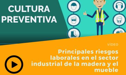 PRINCIPALES RIESGOS LABORALES EN EL SECTOR INDUSTRIAL DE LA MADERA Y EL MUEBLE